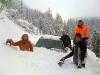12-auto-im-schnee